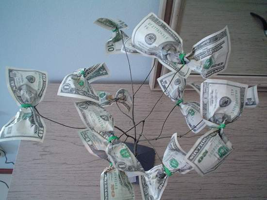 trees and money